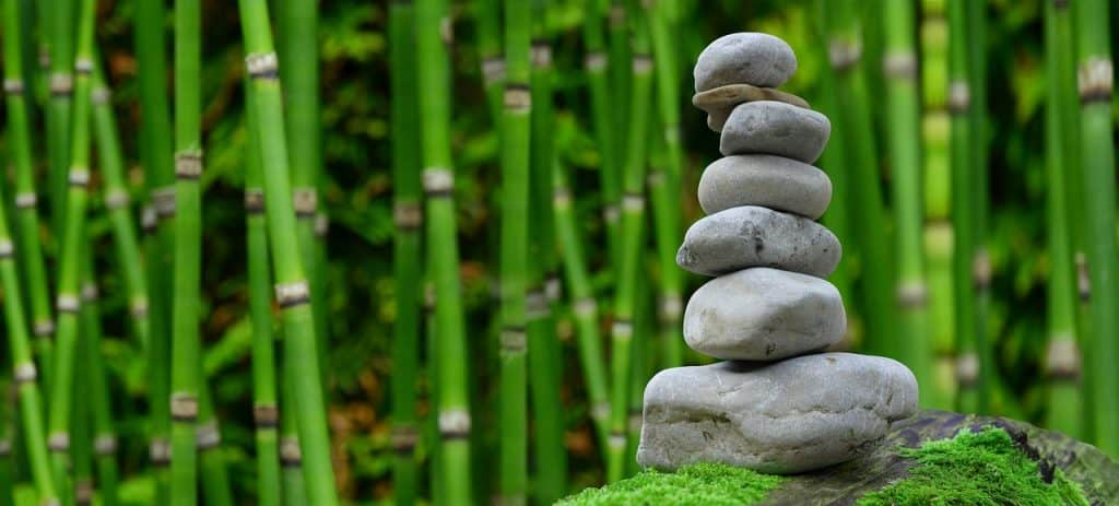 bamboo and a pile of stones