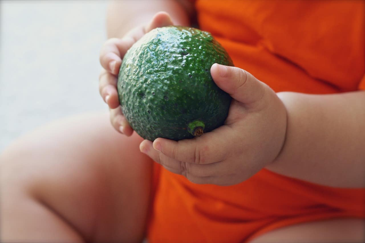 a 1 year old holding an avocado