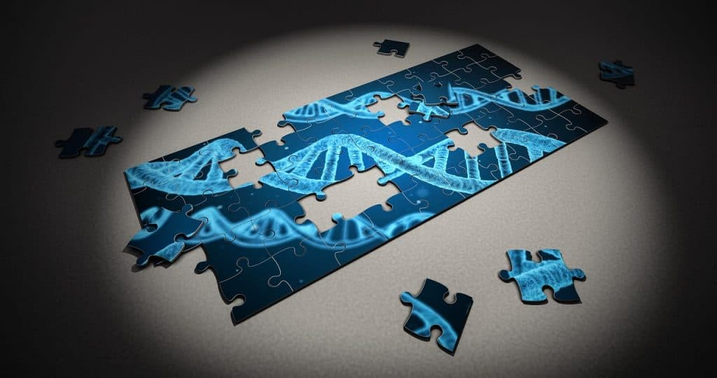 a puzzle showing dna strands
