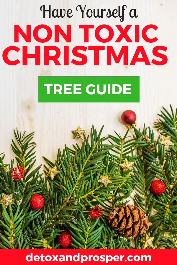 how to find a non toxic christmas tree this year