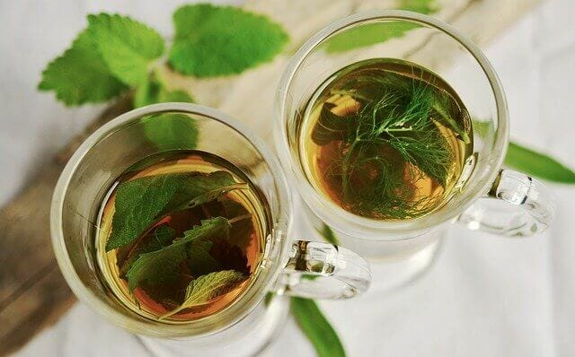 Wild Rose Herbal Detox