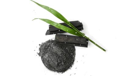 Does Bamboo Charcoal Kill Mold?